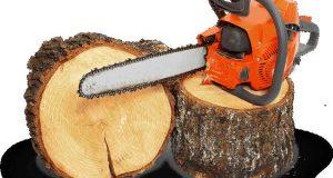 ağaç kesme, ağaç kesme teknikleri, ağaç nasıl kesilir